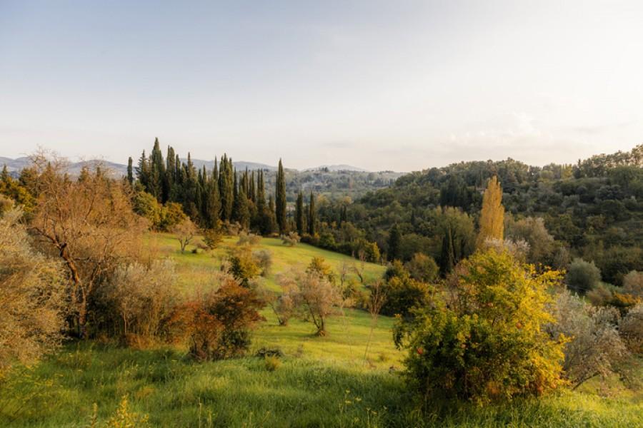 Borgo Bottaia tra le colline toscane